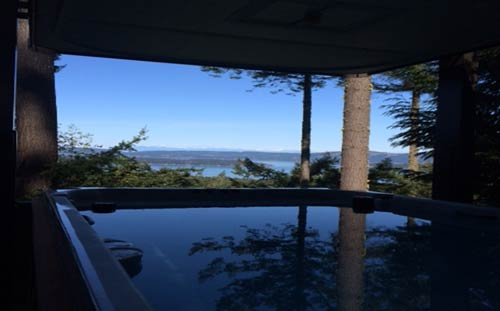 salt spring island meets wolverine swim spa